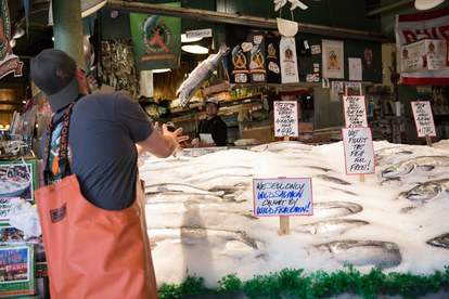 pike-place-fish-toss